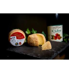 T'Chiot Biloute Cidre
