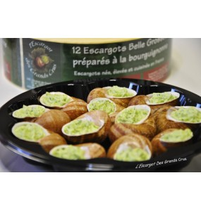 Assiettes de 12 escargots