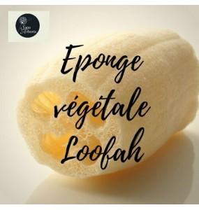 Eponge de Loofah